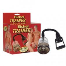 Eichel Glans Trainer